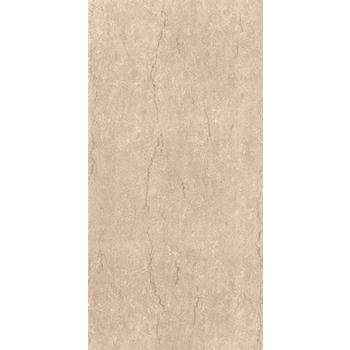 Gạch ốp viglacera F3602 A1