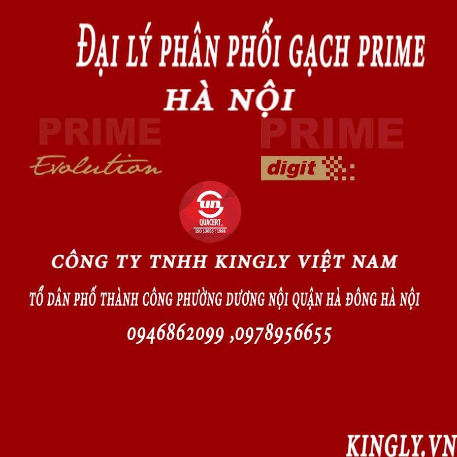 Đại lý phân phối gạch prime trên thị trường Hà Nội